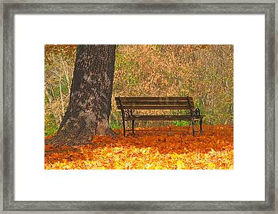 Peace And Quiet Framed Print by Geraldine DeBoer