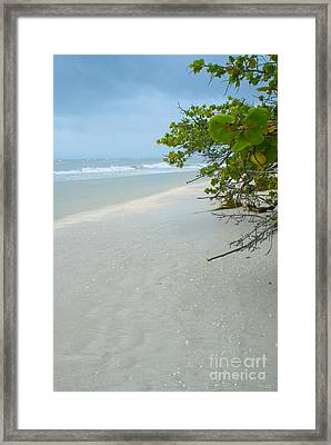 Peace And Quiet On Sanibel Island Framed Print