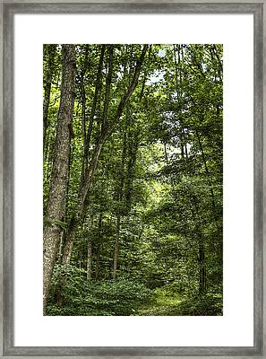 Honour Peace Serenity  Framed Print by Honour Hall