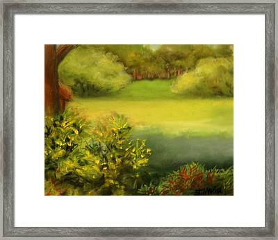 Peace And Solitude Framed Print by Annie St Martin