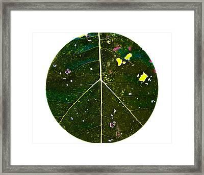 Flower Power Framed Print by Annette Hugen