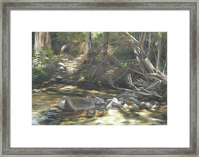 Framed Print featuring the painting Peace At Darby by Lori Brackett