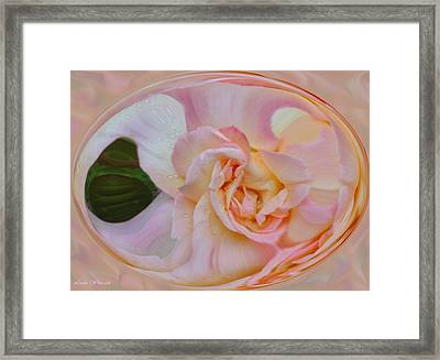 Framed Print featuring the photograph Peace At Sunrise by Linda Whiteside