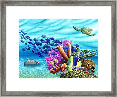 Peace Coral Framed Print by Carolyn Steele