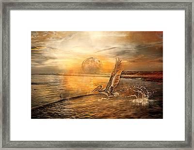Peace Framed Print by Betsy C Knapp