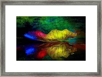 Peace For All Framed Print