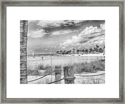 Framed Print featuring the photograph Peace by Howard Salmon