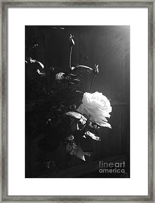 Peace In The Morning Framed Print by Vonda Lawson-Rosa