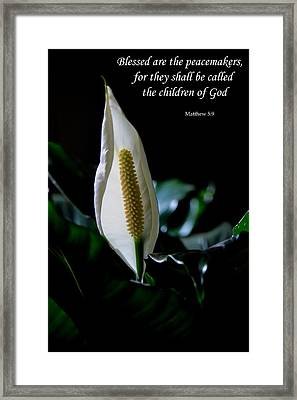 Peace Lily Framed Print by Deena Stoddard