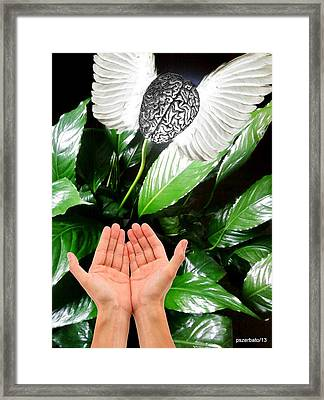 Peace Lily For The Consciousness Framed Print