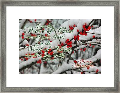 Peace Of Christ Holly Framed Print by Robyn Stacey