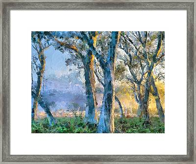 Peace Of Nature Framed Print