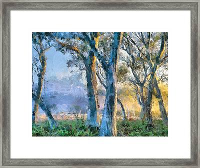 Peace Of Nature Framed Print by Georgiana Romanovna