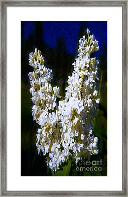 Peace On Earth Abstract Garden Art By Omaste Witkowski Framed Print by Omaste Witkowski