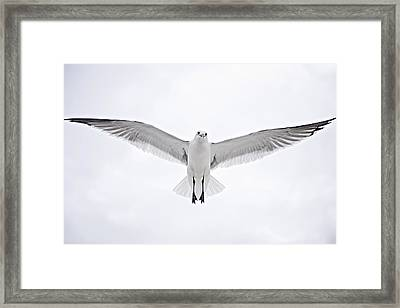 Peace On Earth  Good Will To Men Framed Print by Bonnie Barry