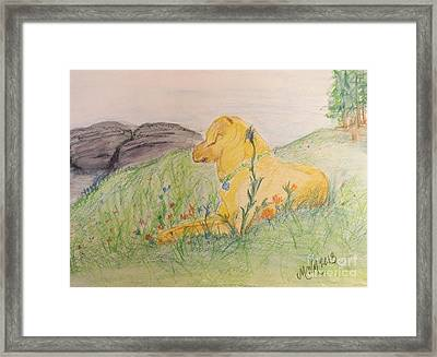 Peace On The Mountainside Framed Print