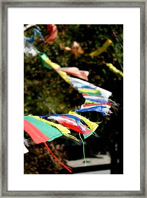 Peace On The Winds Framed Print