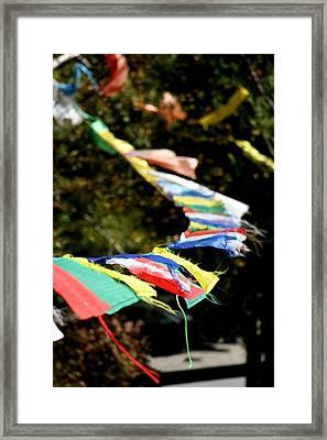 Peace On The Winds Framed Print by Ramon Fernandez