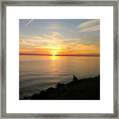 Framed Print featuring the photograph Peace by Thomasina Durkay