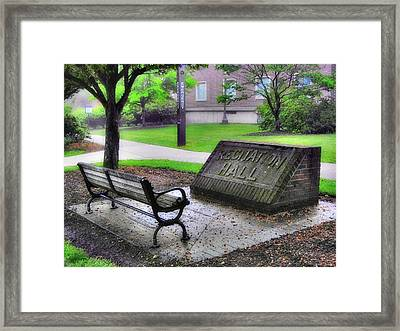 Peace Time Framed Print by Luis A Vera