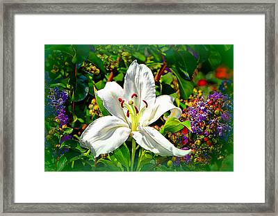 Peace To All.......... Framed Print