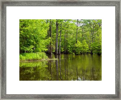 Peaceful Afternoon Framed Print by Ester  Rogers