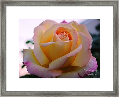 Peaceful Aura Framed Print