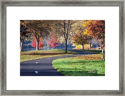 Peaceful Autumn Path II Framed Print