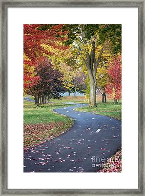 Peaceful Autumn Path Winona Photo Framed Print