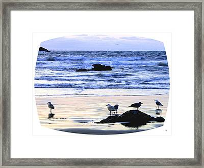 Peaceful Bandon Sunset  Framed Print by Will Borden