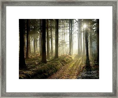 Framed Print featuring the photograph Peaceful by Boon Mee