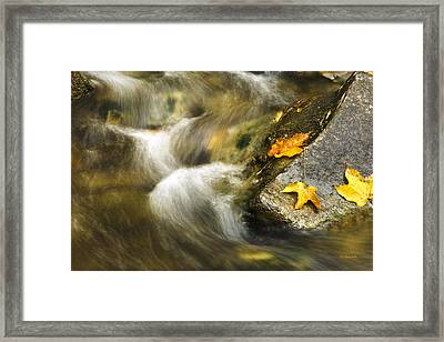 Peaceful Creek Framed Print by Christina Rollo