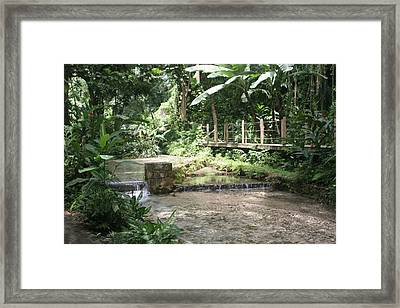 Peaceful Framed Print by Dervent Wiltshire