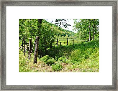 Peaceful Field Framed Print by Stephanie Grooms