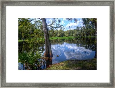 Peaceful Florida Framed Print by Timothy Lowry