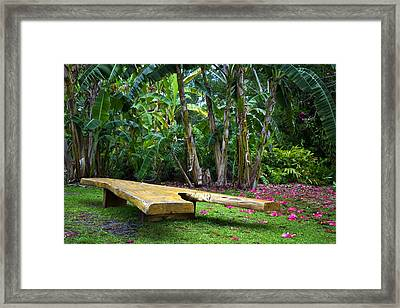 Peaceful Garden Framed Print