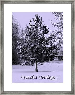 Peaceful Holidays Framed Print by Carol Groenen