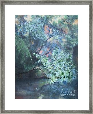 Peaceful Interlude Framed Print by Mary Lynne Powers
