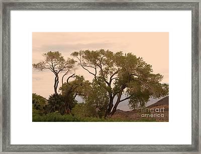 Peaceful Framed Print by Kathleen Struckle