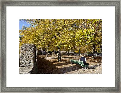 Peaceful Lunch In On Theterrace Of Collegiale De Neuchatel Framed Print