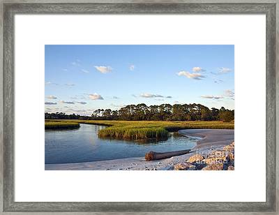 Peaceful Marsh Framed Print by Paula Porterfield-Izzo