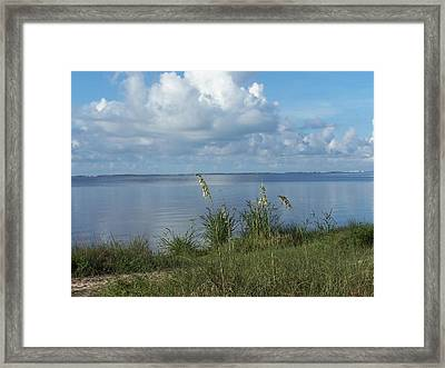 Framed Print featuring the photograph Peaceful by Michele Kaiser