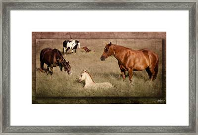 Peaceful Moment Captured Framed Print by Jacque The Muse Photography