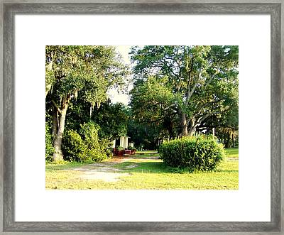 Peaceful Morning Framed Print by Catherine Gagne
