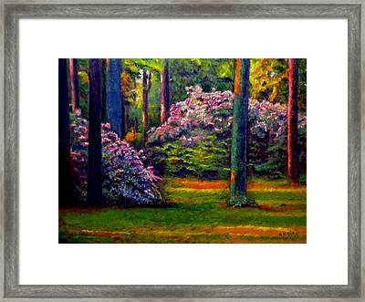 Peaceful Morning Framed Print by Michael Durst
