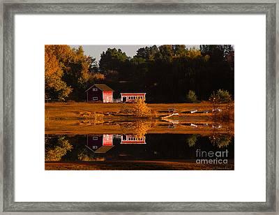 Peaceful Morning Framed Print