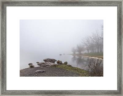 Peaceful Morning Framed Print