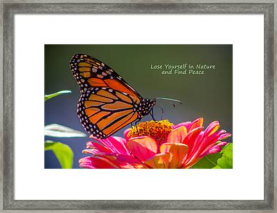 Peaceful Nature Framed Print
