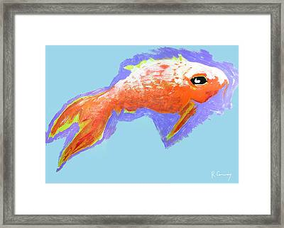 Peaceful Orange Goldfish Framed Print by Robert Conway