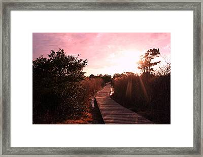 Framed Print featuring the photograph Peaceful Path by Karen Silvestri